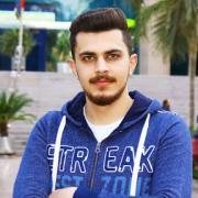 محمد انيس